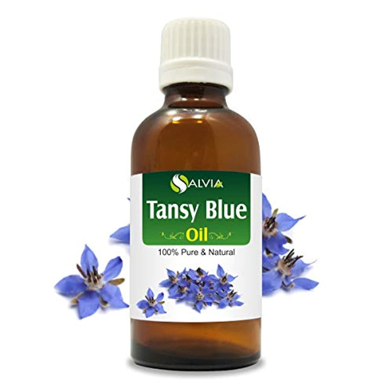 観光に行く役に立つ輪郭Tansy Blue Oil (Tanacetum annuum) 100% Natural Pure Undiluted Uncut Essential Oil 30ml