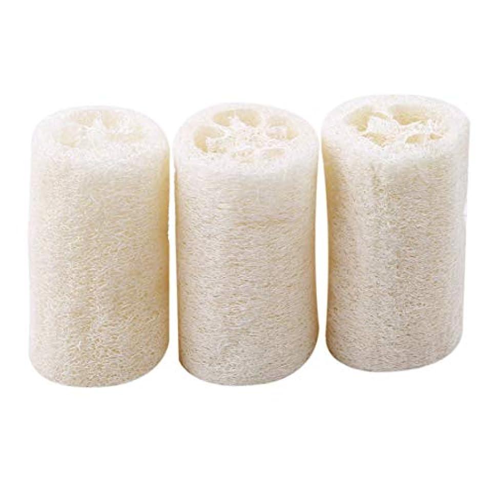 静かに普遍的なハイライトOnior 耐久性 ボディースポンジ へちま お風呂 清掃 洗浄作業 3個セット