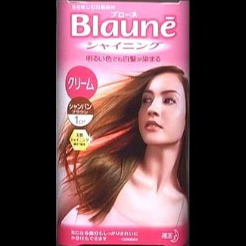 実験縞模様のレディ【まとめ買い】ブローネシャイニングヘアカラークリーム 1CP シャンパンブラウン ×2セット