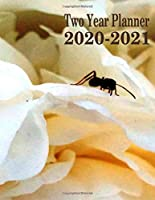 Two Year Planner 2020-2021: Ant On Peony 2020-2021 Monthly Planner 8.5 x 11