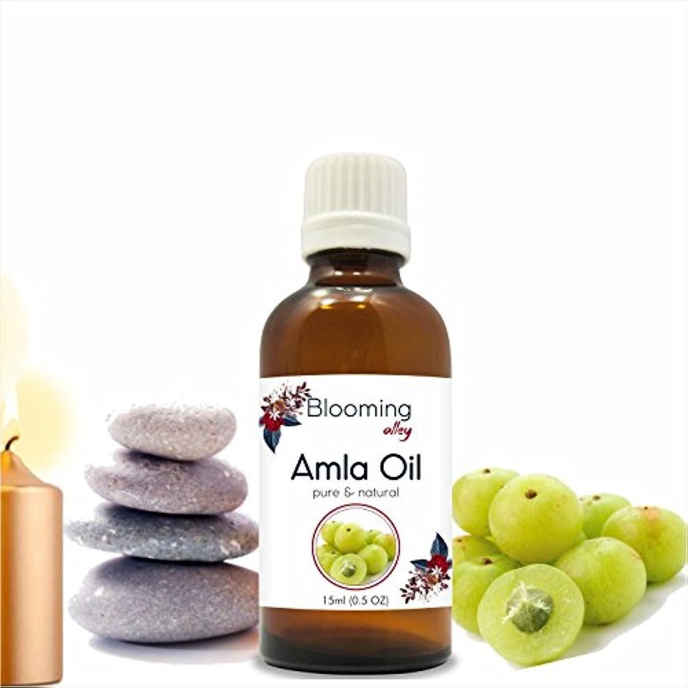 大騒ぎ畝間無効にするAMLA Indian Gooseberry (Emblica officinalis) Infused Oil 15ML