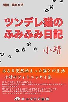 [小靖]のツンデレ猫のふみふみ日記