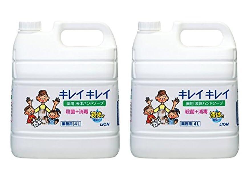 記者省略偏心【大容量】キレイキレイ 薬用ハンドソープ 4L×2個