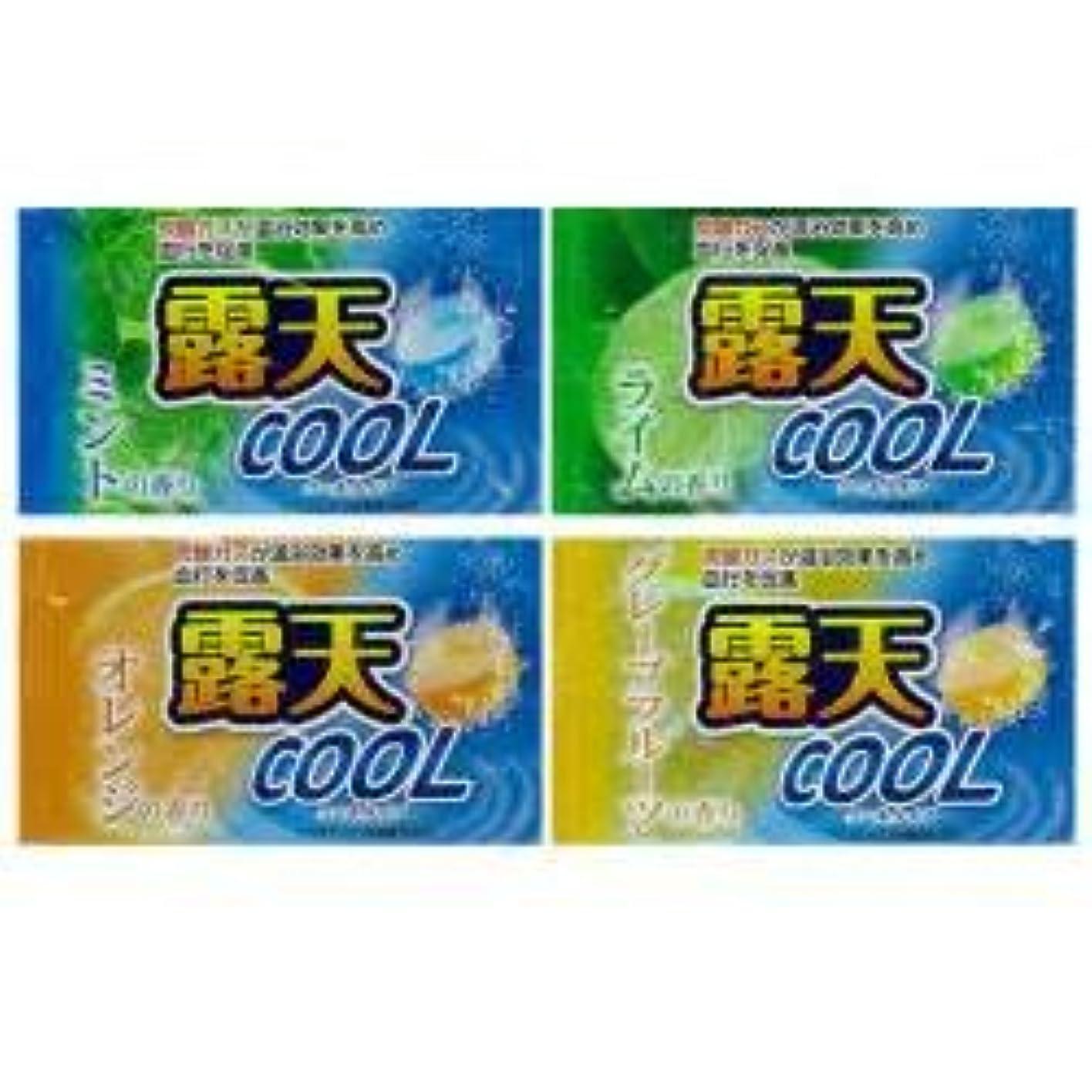 熟すホスト立証する薬用発泡入浴剤 露天クール 4種×3 12個