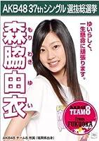【森脇由衣】ラブラドール・レトリバー AKB48 37thシングル選抜総選挙 劇場盤限定ポスター風生写真 AKB48チーム8