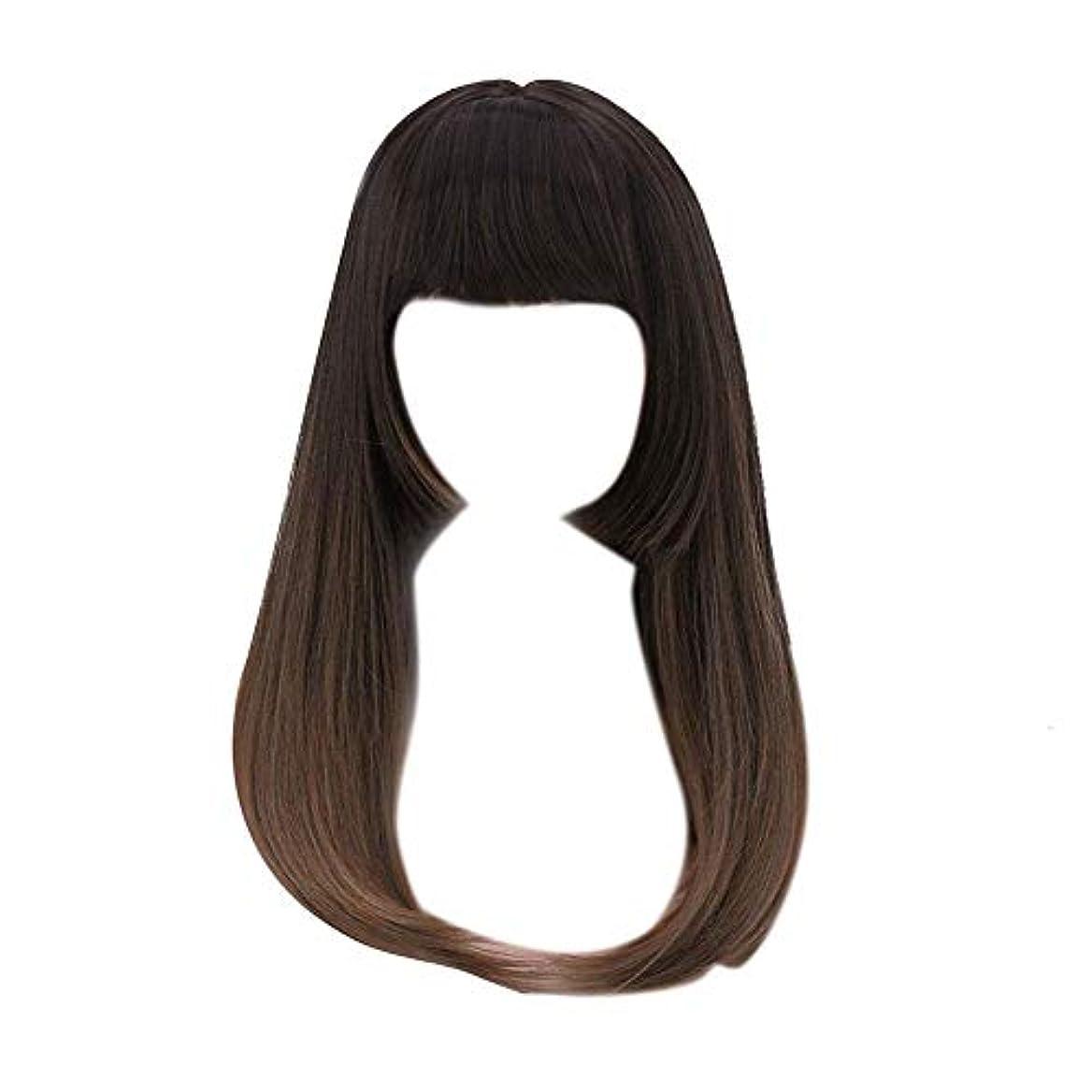 突き刺す方程式スロットSILUN ウィッグ ロング セミロング レディース かつら フルウィッグ 軽量 自然 フリーサイズ ロング ヘアー 長い髪
