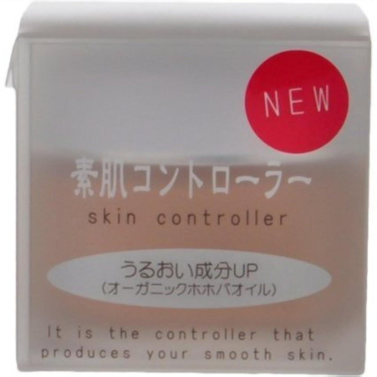 添加剤レシピ迫害素肌シリーズ 素肌コントローラー(さっぱりタイプ) 40g 2個組