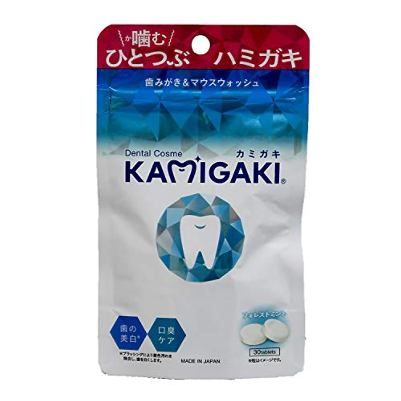 ロケット無し言語学デンタルコスメ カミガキ タブレット型歯磨き粉 フォレストミント 1個