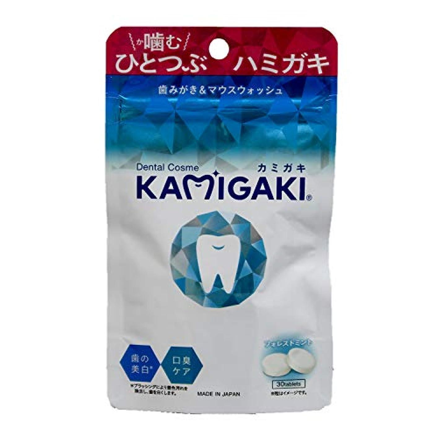 禁止する準拠ひねくれたデンタルコスメ カミガキ タブレット型歯磨き粉 フォレストミント 1個