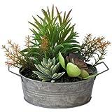 フェイクプランツ 多肉植物(寄せ植え) DECOR IMITATION CACTUS BLIK...