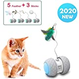 Yvelife Interactive Cat Toys Ball,Automatic Irregular Moving with Large Capacity Battery,Cat Bird/Wand/Spring Toys for Kitten/Cats