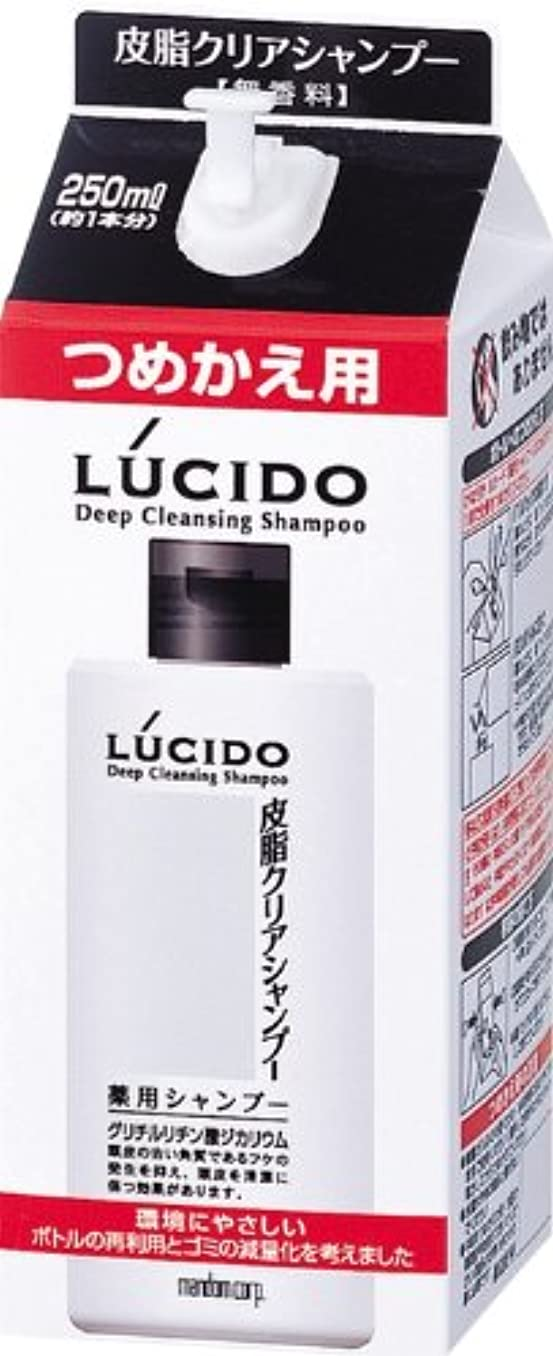 表示壊滅的な日常的にLUCIDO (ルシード) 皮脂クリア薬用シャンプー 詰め替え用 (医薬部外品) 250mL