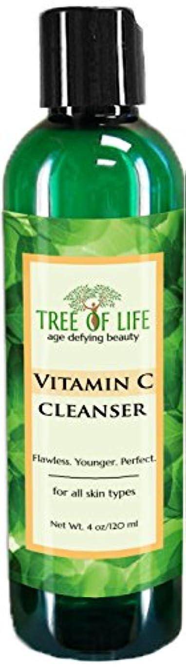 恥ずかしさ部屋を掃除する慣習Tree of Life Beauty ビタミン C フェイシャル クレンザー 若返り フェイス スクラブ