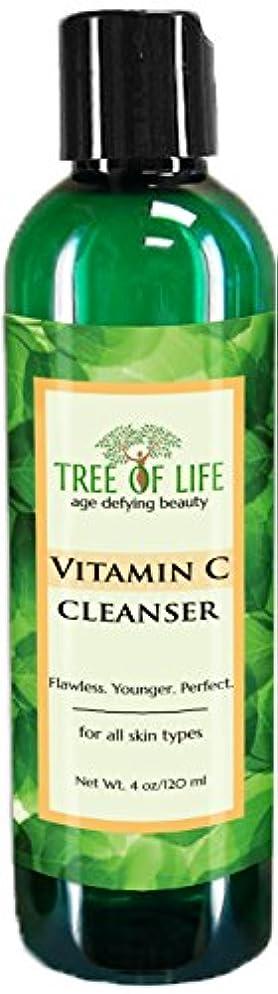 衝突クレジット日常的にTree of Life Beauty ビタミン C フェイシャル クレンザー 若返り フェイス スクラブ