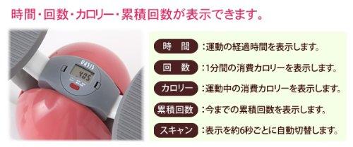 東急スポーツオアシス フィットネスクラブがつくったツイストステッパー SP-100