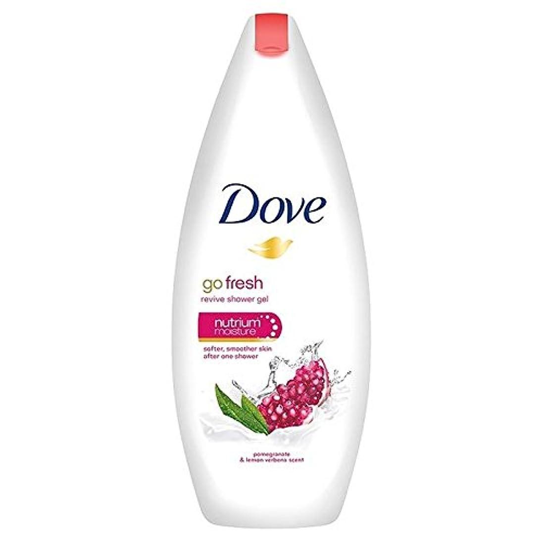 佐賀再生的ひどく鳩は、新鮮なザクロボディウォッシュ250ミリリットルを行きます x2 - Dove Go Fresh Pomegranate Body Wash 250ml (Pack of 2) [並行輸入品]