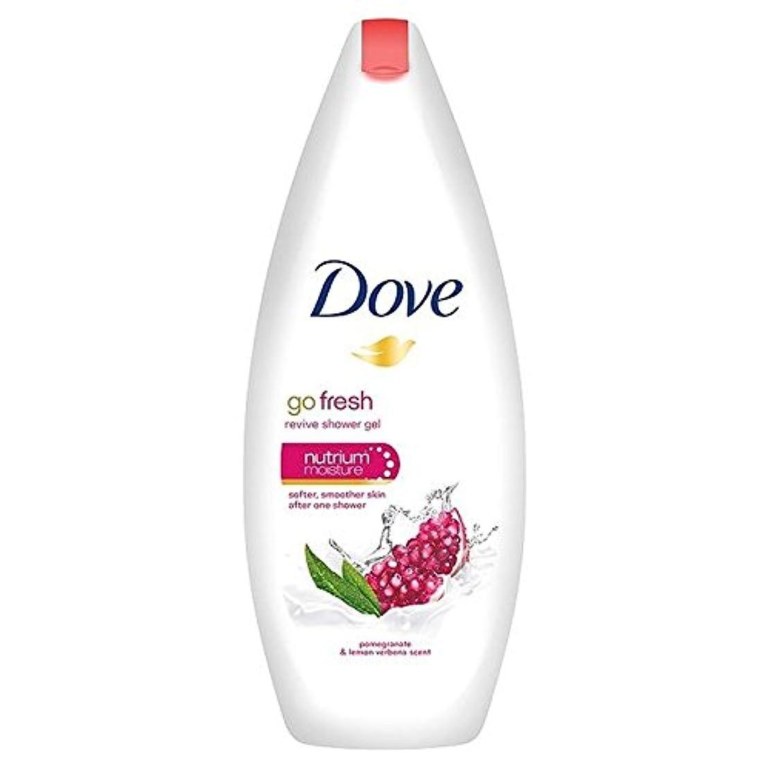 定期的にペンス鳩は、新鮮なザクロボディウォッシュ250ミリリットルを行きます x4 - Dove Go Fresh Pomegranate Body Wash 250ml (Pack of 4) [並行輸入品]