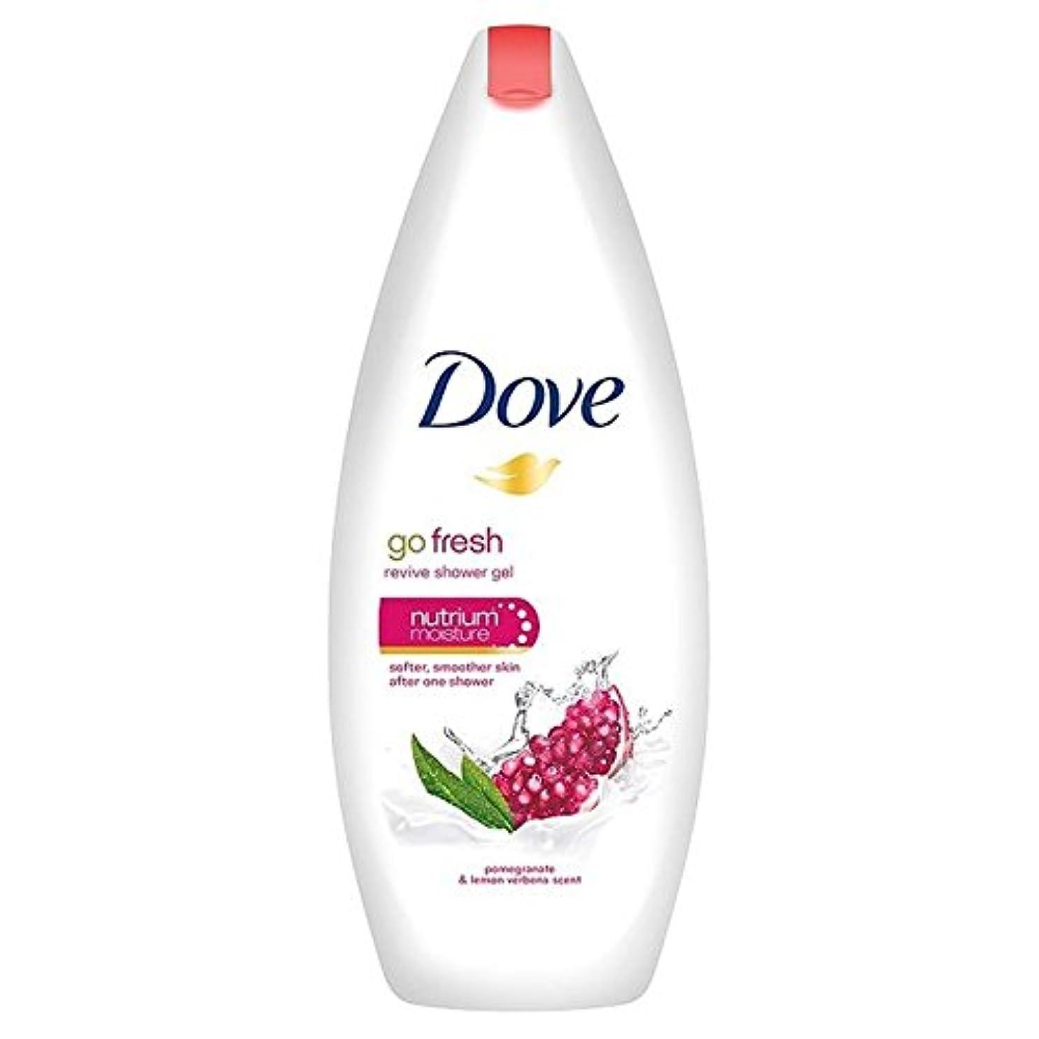 意気込み逆風味鳩は、新鮮なザクロボディウォッシュ250ミリリットルを行きます x2 - Dove Go Fresh Pomegranate Body Wash 250ml (Pack of 2) [並行輸入品]