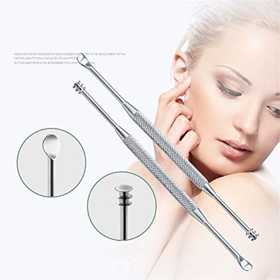 ライオネルグリーンストリート日花火ZHQI-GH 1ピース&3ピース新しいステンレス鋼の皮の耳シルバーディグ耳かきワックスリムーバーキュレット用クリーニング耳スプーンクリーンヘルスケア耳ケアツール40 (色 : Silver, Size : 1pcs)