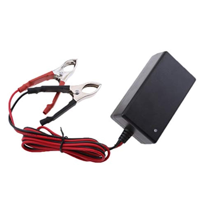 同行する反対するマガジンKESOTO おもちゃの車のモータークワッドバイクのための12V 14.6V 1Aの鉛酸蓄電池の充電器