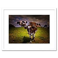 Photo Landscape Sunlit Cow Cattle Herd Grass Farming Framed Wall Art Print 写真風景ファーム壁