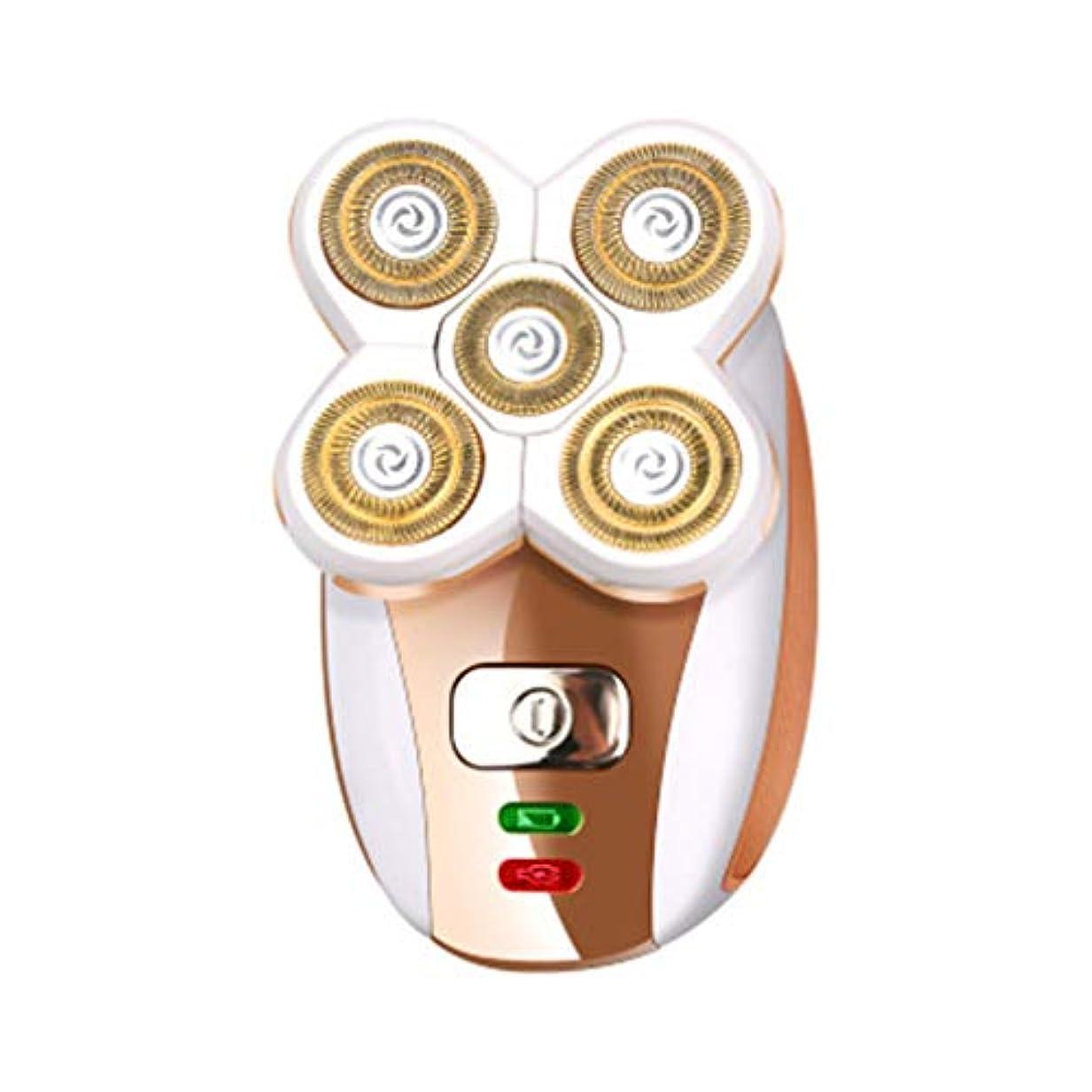 女性のための脱毛顔の脱毛器電気かみそり美容キット2 in 1脱毛剤、口紅体毛脱毛器ドライとウェットデュアルユース,A