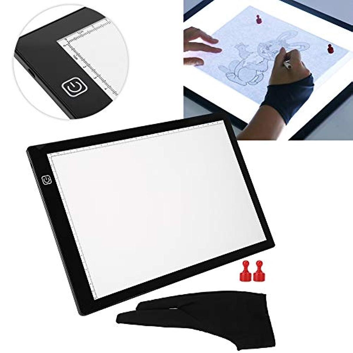 へこみラベンダーダムLEDライトボックス絵画型板 USB コピーパッド 生気に満ちた ライトテーブルのデッサンA4 - アニメーション、コピーのデッサン、生気、スケッチ、型板のため