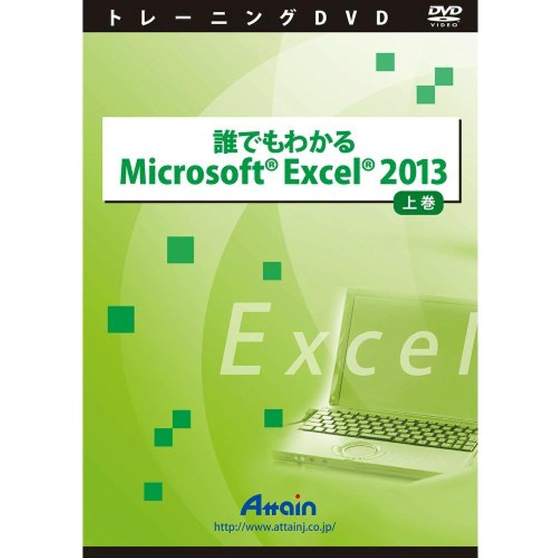 側面驚かすマチュピチュ誰でもわかるMicrosoft Excel 2013 上巻