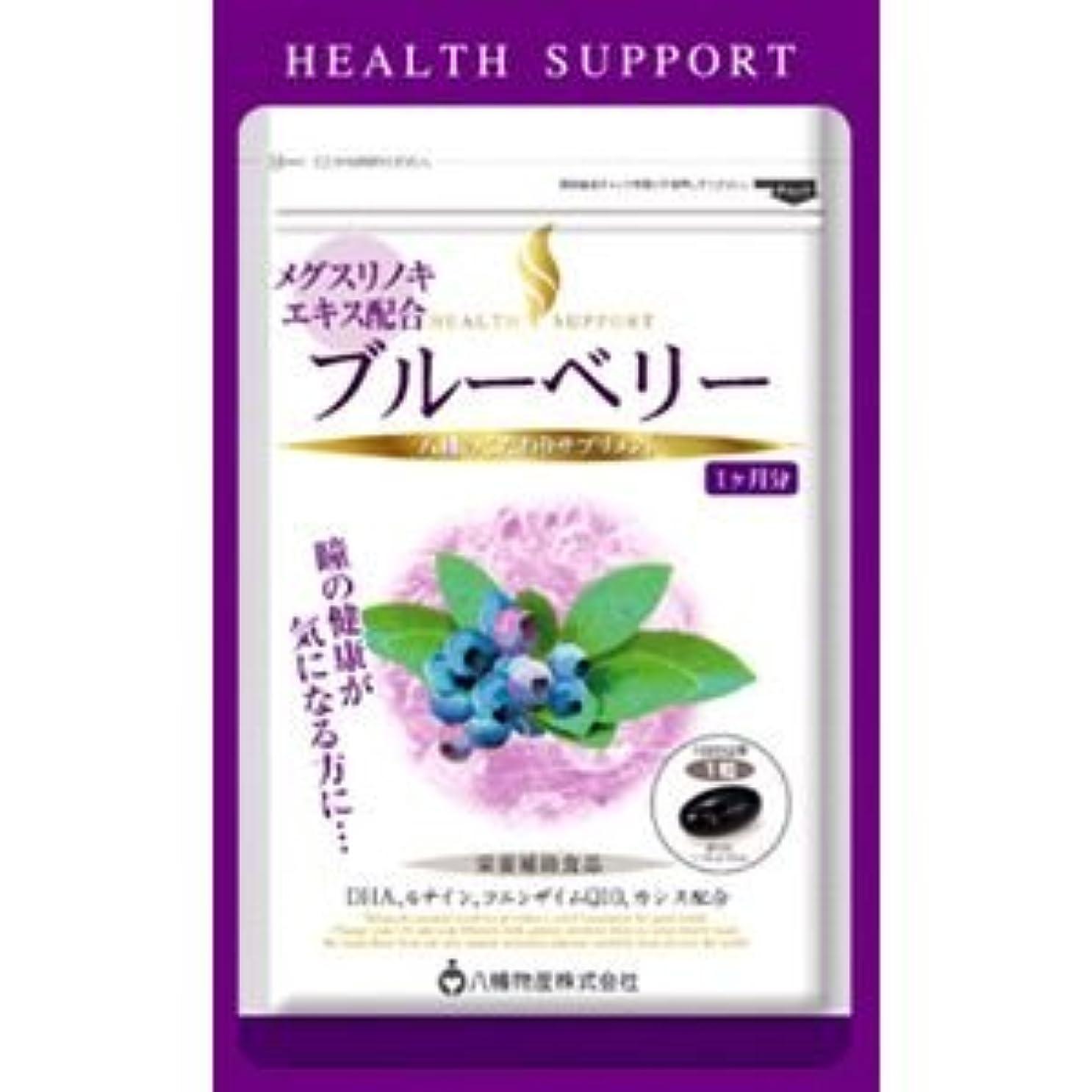 ヘルスサポート ブルーベリー 30粒×(6セット)