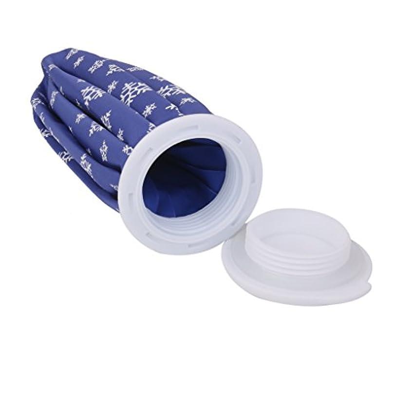許容できる夕食を食べるパンサーdailymall 氷嚢 アイスバッグ コールドパック 氷バッグ アイシング用 競技備品