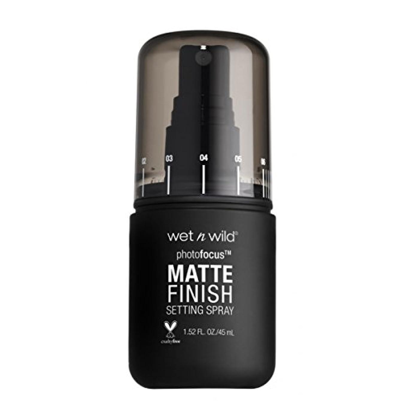 言い直す口熱心な(6 Pack) WET N WILD Photo Focus Matte Finish Setting Spray - Matte Appeal (並行輸入品)