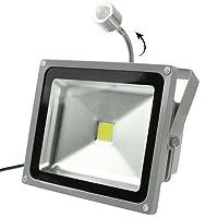 TSFFO 20Wの防水人間のセンサー白いLEDの投光ランプ、AC 85-265V、光束:1800lm - 2000lm、検出距離:3-8Mウォームホワイト (SKU : S-led-1622w)