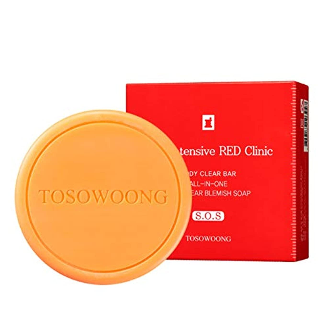 [TOSOWOONG]トソウンレッドクリニックボディバー100g / TOSOWOONG RED CLINIC BODY BAR 100g [並行輸入品]