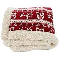 SUNNY 豪華な家庭用ブランケット柔らかい暖かいソファは150x200cmを投げる (色 : Red, サイズ さいず : 150 x 200cm)