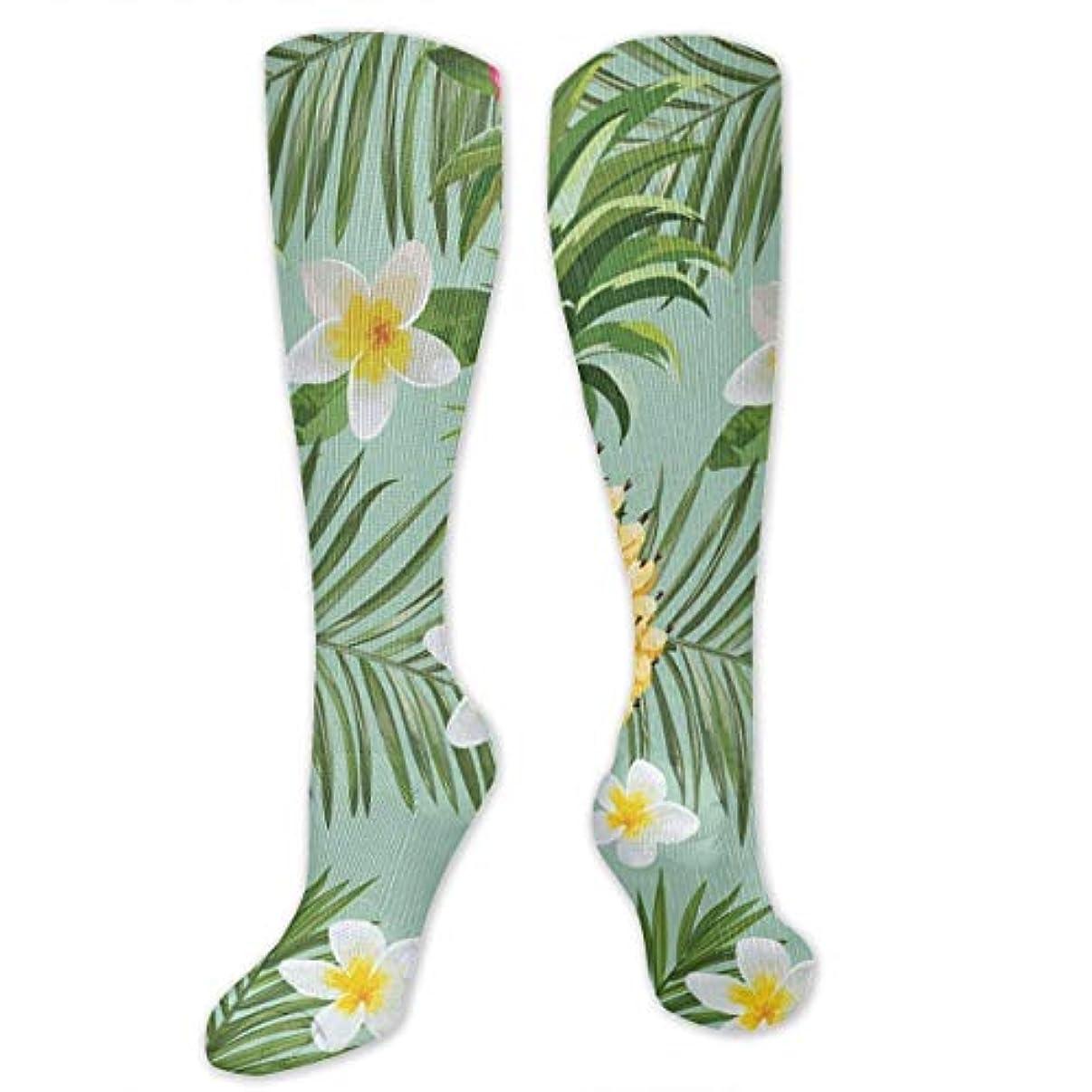 お手入れ解明する酔う靴下,ストッキング,野生のジョーカー,実際,秋の本質,冬必須,サマーウェア&RBXAA Hawaiian Pineapple Socks Women's Winter Cotton Long Tube Socks Knee...