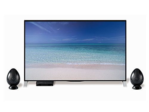 東和電子 TV用スピーカー TW-D9HDM B016BHONCG 1枚目