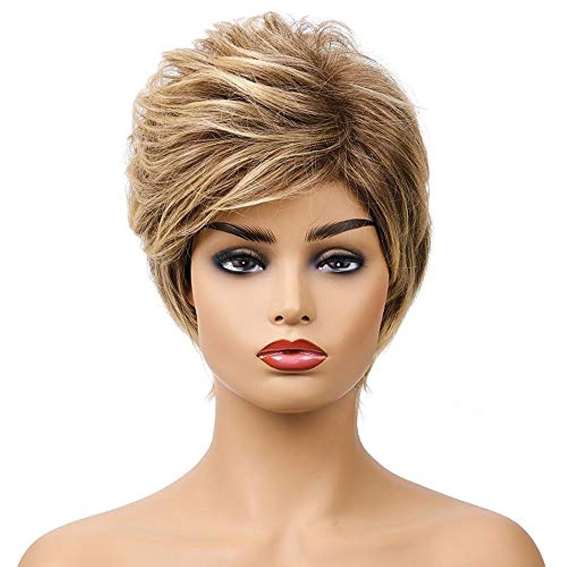 プール聖職者同性愛者女性の短い茶色の巻き毛のかつら、女性の側部のかつら、黒人女性のための自然なかつら、合成衣装ハロウィンコスプレパーティーウィッグ、茶色の黄色の混合色(ウィッグキャップ付き)