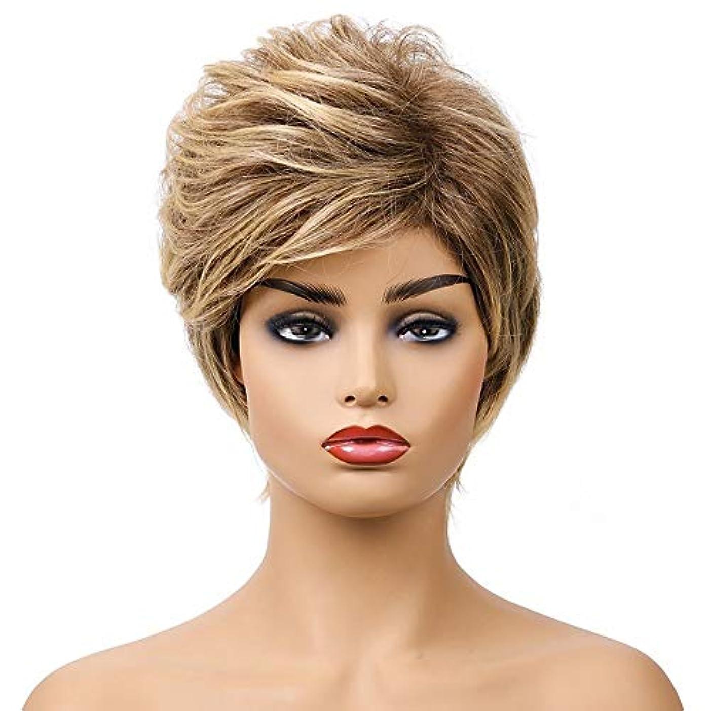 地味な植物学虐殺女性の短い茶色の巻き毛のかつら、女性の側部のかつら、黒人女性のための自然なかつら、合成衣装ハロウィンコスプレパーティーウィッグ、茶色の黄色の混合色(ウィッグキャップ付き)
