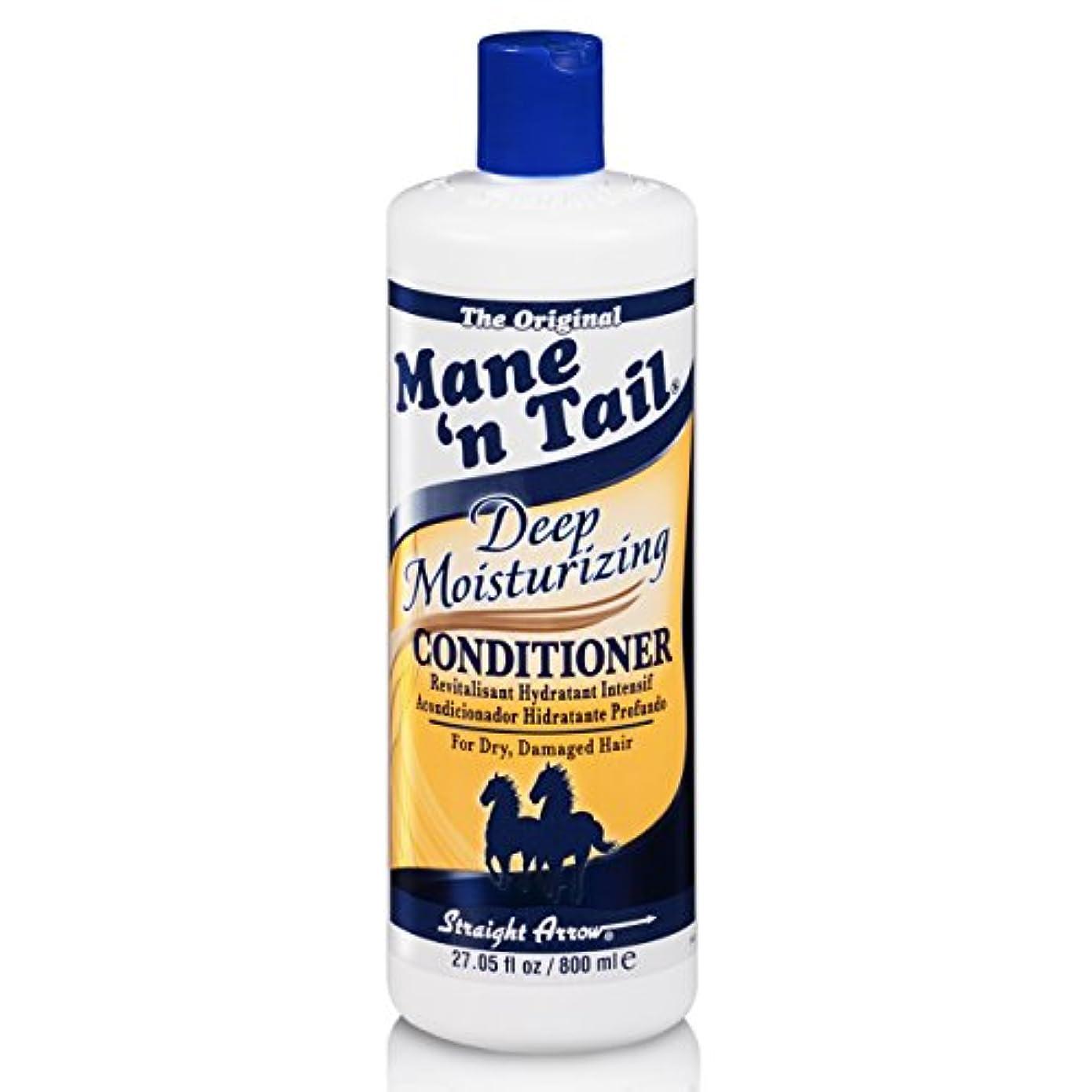 憂鬱な長々と食い違いMane 'n Tail 乾燥してダメージヘア27.05オンスを復元するために、ディープモイスチャライジングコンディショナー
