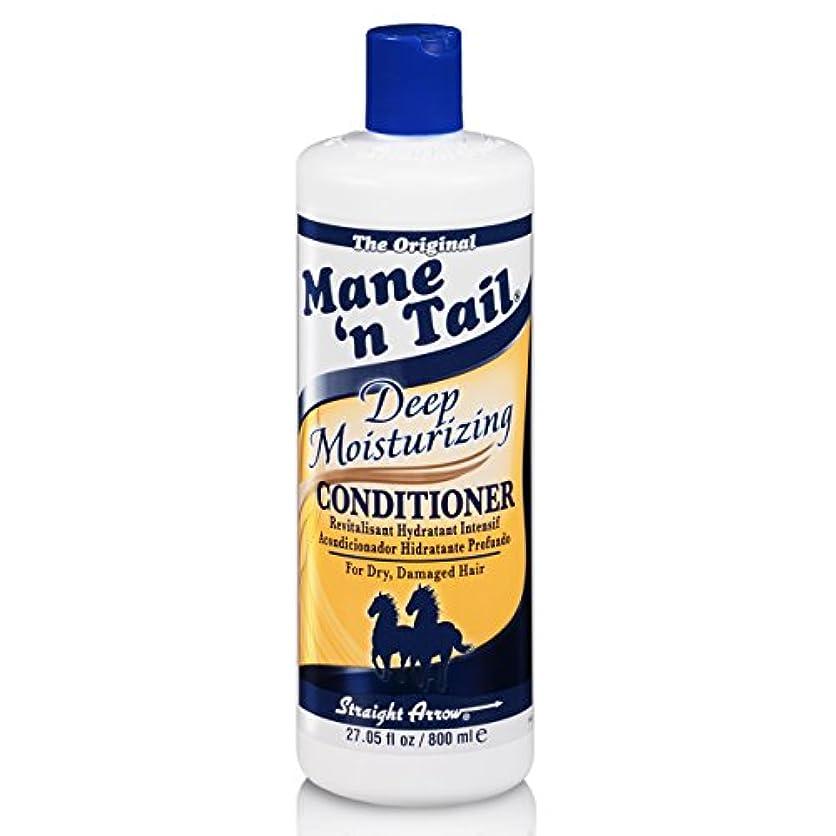 Mane 'n Tail 乾燥してダメージヘア27.05オンスを復元するために、ディープモイスチャライジングコンディショナー