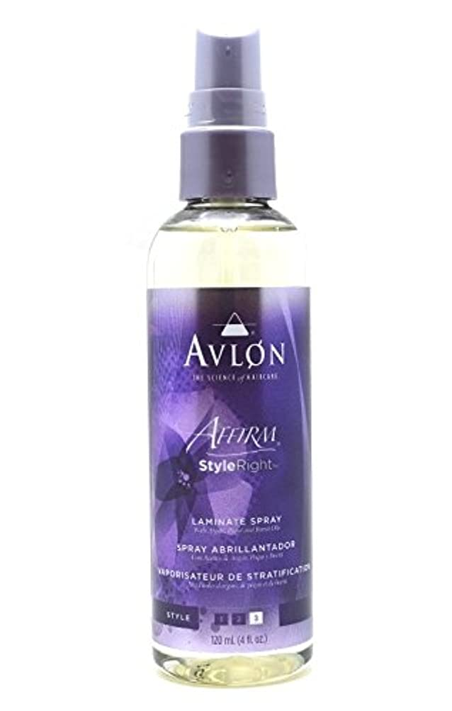 国勢調査かき混ぜるおそらくAvlon Hair Care アバロンアファームスタイル右ラミネートスプレー - 4.0オンス 4オンス