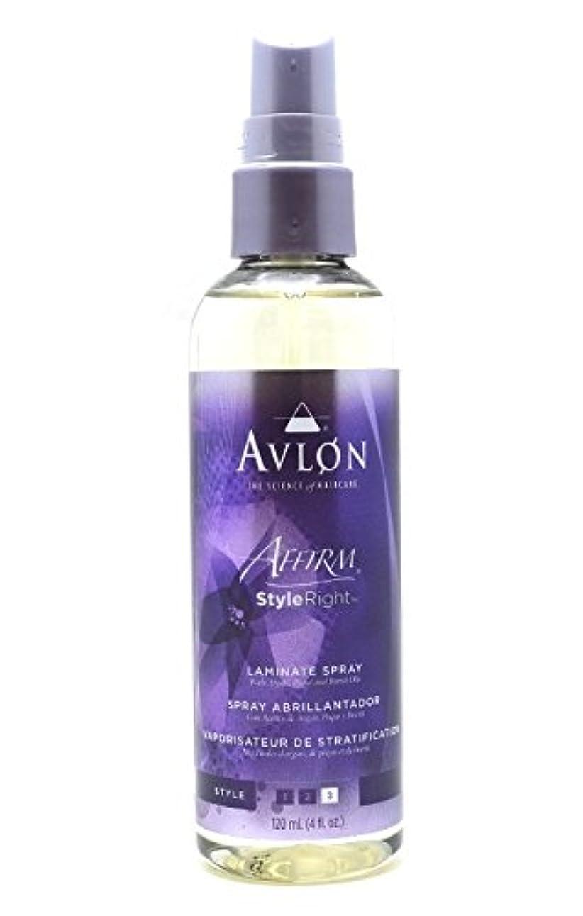 司教朝ごはん島Avlon Hair Care アバロンアファームスタイル右ラミネートスプレー - 4.0オンス 4オンス