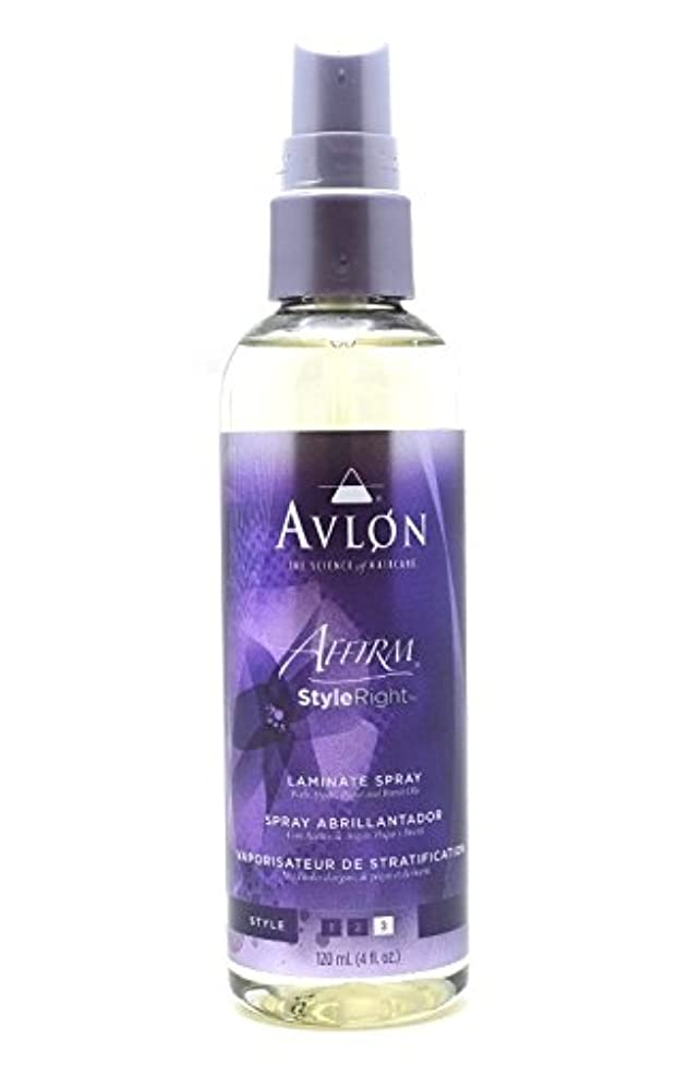 中級回転ポジションAvlon Hair Care アバロンアファームスタイル右ラミネートスプレー - 4.0オンス 4オンス