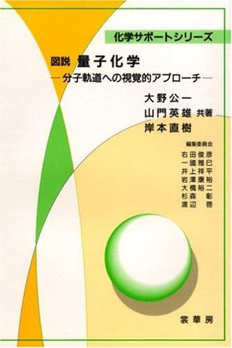 図説 量子化学―分子軌道への視覚的アプローチ (化学サポートシリーズ)