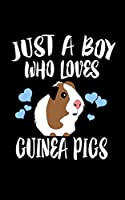 Just A Boy Who Loves Guinea Pigs: Animal Nature Collection