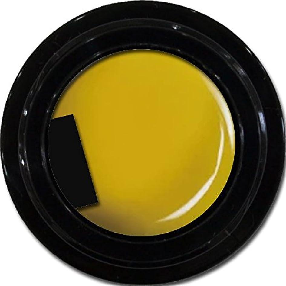くモロニックマークされたカラージェル enchant color gel M604 Mustard 3g/ マットカラージェル M604 マスタード 3グラム