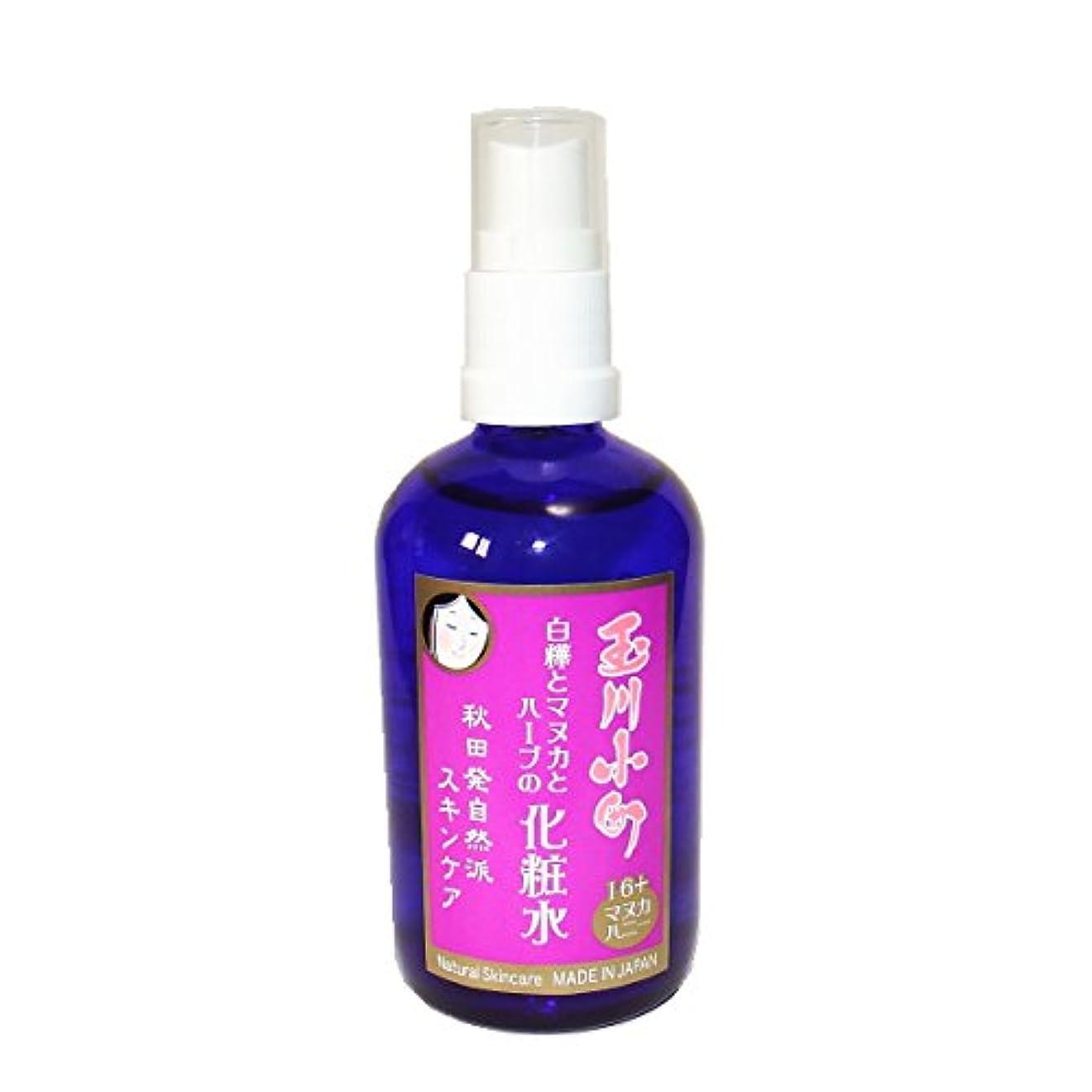 最近発表漂流玉川小町白樺とハーブの化粧水