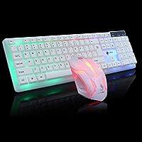 FidgetGear カラフルなLED照明バックライト付きUSB有線PCレインボーゲーミングキーボードマウスセット 白