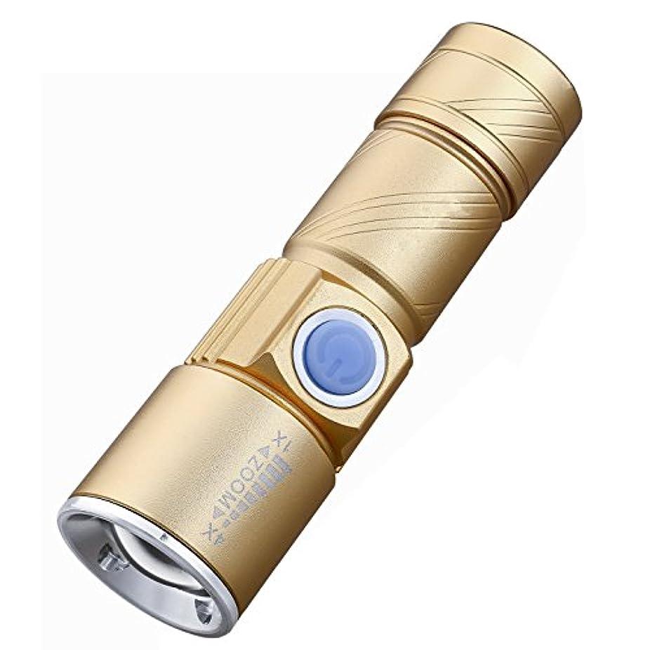 対人バリケード励起1stモール 小型 LED ハンドライト 懐中電灯 USB充電式 アウトドア 緊急