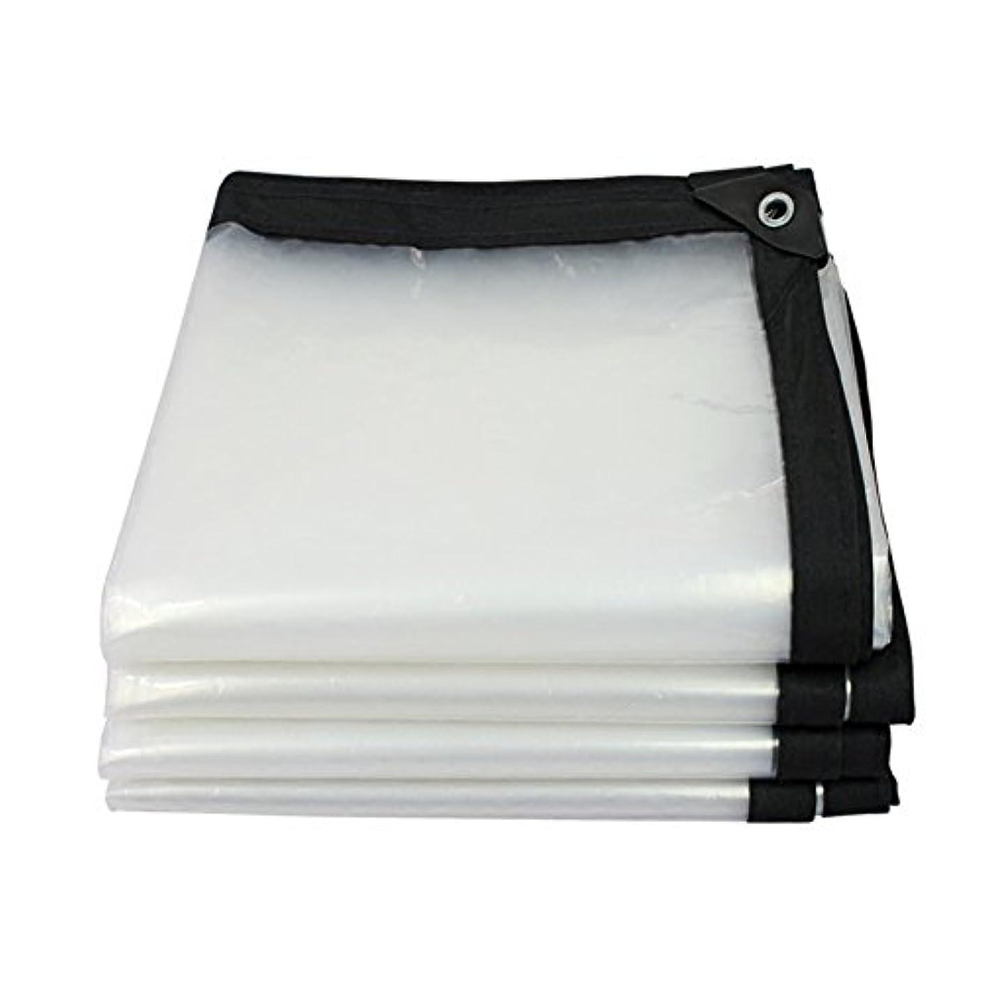 段階猫背内側XJZxX 厚手透明防水シート防水布防水プラスチック防水シート家庭用装飾防塵布 (サイズ さいず : 4m x 6m)